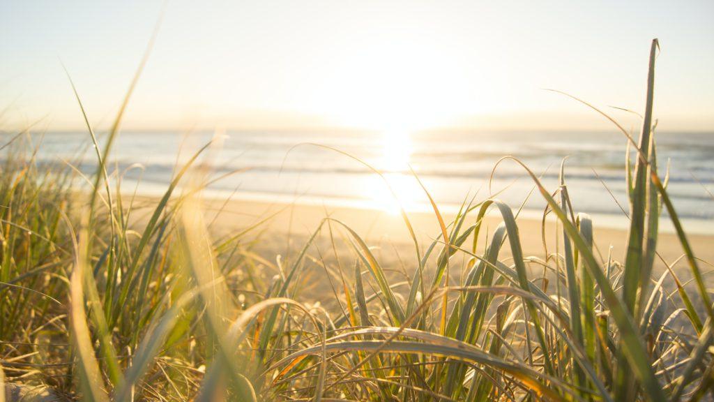Få gode råd til sommerferien tæt på en psykisk syg-